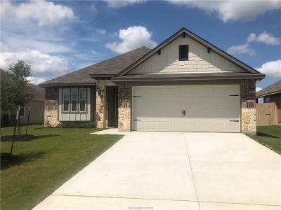 College Station Single Family Home For Sale: 6318 Daytona Drive