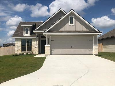 College Station Single Family Home For Sale: 6320 Daytona Drive