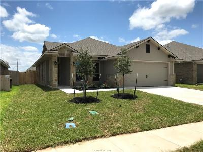 Creek Meadows Single Family Home For Sale: 3861 Still Creek Loop
