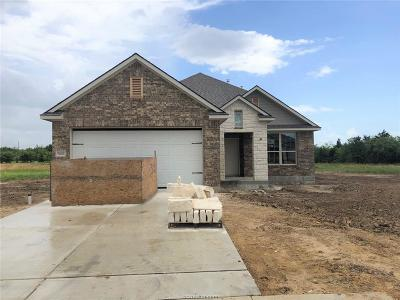 Brazos County Single Family Home For Sale: 5132 Maroon Creek Drive