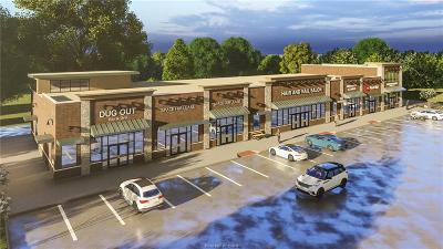College Station Commercial For Sale: 3160 Holleman Suite 104