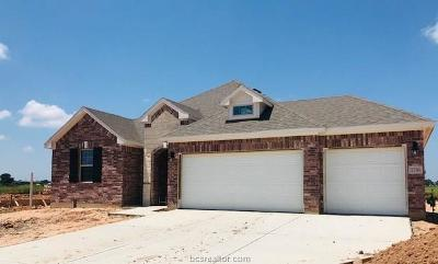Navasota Single Family Home For Sale: 7716 Bogie Lane