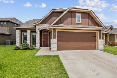 Bryan Single Family Home For Sale: 1070 Venice Drive