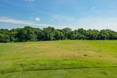 bryan Residential Lots & Land For Sale: 4907 Blazing Trail
