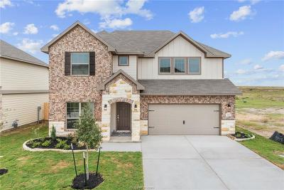 College Station Single Family Home For Sale: 6306 Eldora Drive