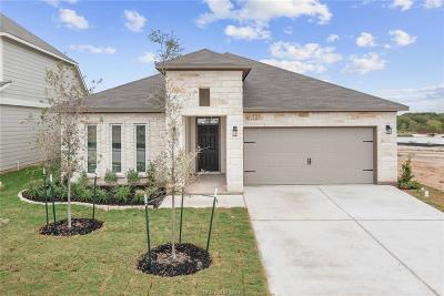College Station Single Family Home For Sale: 6309 Southern Cross Drive