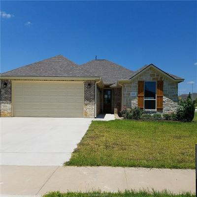 Bryan Single Family Home For Sale: 3089 Peterson Circle