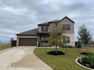 College Station Single Family Home For Sale: 3660 Haskell Hollow Loop