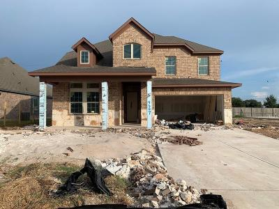 College Station Single Family Home For Sale: 4607 Tonbridge Drive
