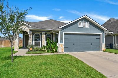 Bryan Single Family Home For Sale: 1050 Venice Drive