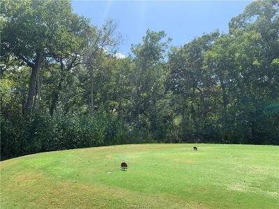 Bryan Residential Lots & Land For Sale: 3217 Elm Creek Court