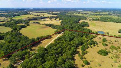 Caldwell Residential Lots & Land For Sale: (+/-243.69 Acres) County Road 334
