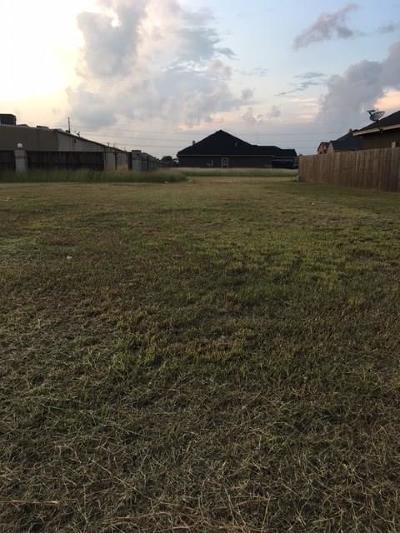 Corpus Christi Residential Lots & Land For Sale: 4133 Rayado Creek Dr