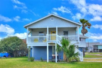 Port Aransas Single Family Home For Sale: 1515 S Eleventh
