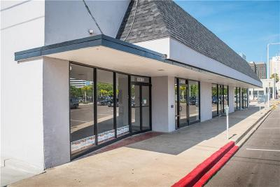 Corpus Christi Single Family Home For Sale: 1024 Leopard St