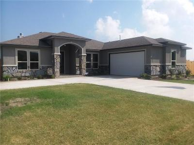 Single Family Home For Sale: 3722 Nahid Ct