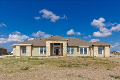 Corpus Christi TX Single Family Home For Sale: $399,900