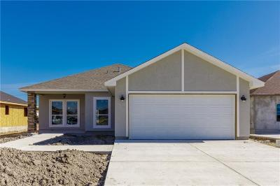 Single Family Home For Sale: 2521 Luzius Dr