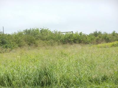 Corpus Christi Residential Lots & Land For Sale: 2037 Sunnycrest St