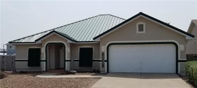 Corpus Christi TX Single Family Home For Sale: $430,000