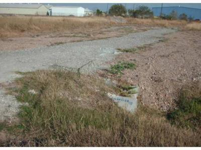 Corpus Christi TX Residential Lots & Land For Sale: $54,900