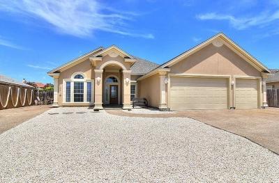 Corpus Christi TX Single Family Home For Sale: $329,000