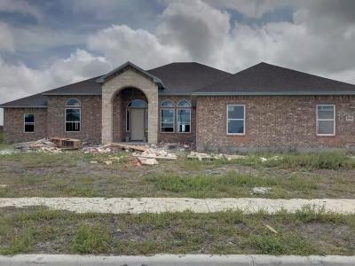 Single Family Home For Sale: 2018 Arash Dr