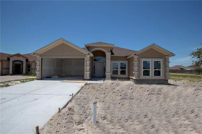 Single Family Home For Sale: 2506 Luzius Dr