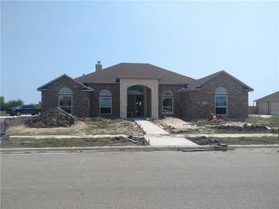 Corpus Christi Single Family Home For Sale: 641 Hyacinth Dr
