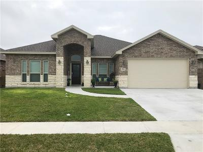 Single Family Home For Sale: 2522 Ellie Dr
