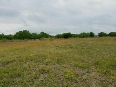 Robstown Residential Lots & Land For Sale: 6297 Branding Iron