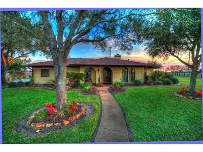 Robstown Single Family Home For Sale: 4203 Rand