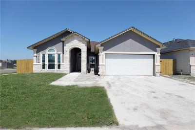 Single Family Home For Sale: 3101 Cowboys Ct