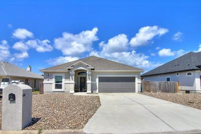 Single Family Home For Sale: 14713 Lighthouse Dr