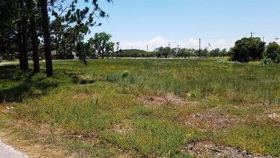 Residential Lots & Land For Sale: Xxx Fm 1069