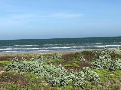 Residential Lots & Land For Sale: 8117 Beach Break Dr
