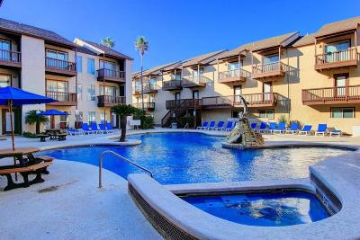 Corpus Christi Condo/Townhouse For Sale: 14802 Windward Dr #229