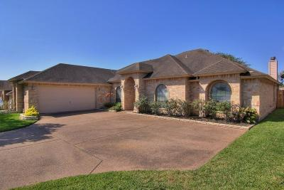 Single Family Home For Sale: 15313 Guadalupe River Dr