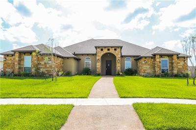 Corpus Christi Single Family Home For Sale: 8802 Skyknight Dr