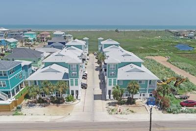 Port Aransas Condo/Townhouse For Sale: 3021 Eleventh St 9 #9