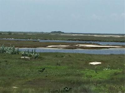 Port Aransas Residential Lots & Land For Sale: 4100 Highway 361
