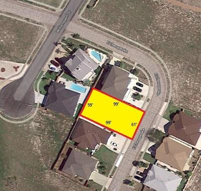 Corpus Christi Residential Lots & Land For Sale: 22/2 Chesapeake