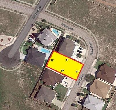 Corpus Christi Residential Lots & Land For Sale: Lt 22 Blk 2 Chesapeake