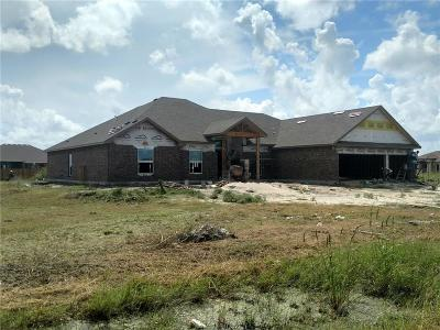 Single Family Home For Sale: 1225 Hyde Park Dr