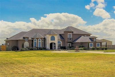 Corpus Christi Single Family Home For Sale: 1183 County Road 18 Cr