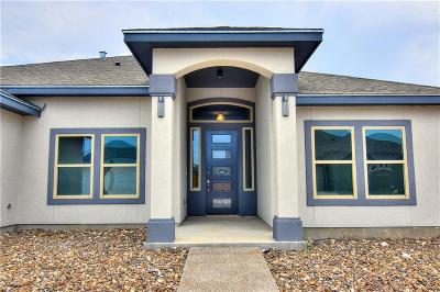 Single Family Home For Sale: 14146 Vincent Dr