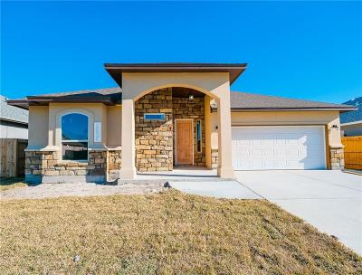 Single Family Home For Sale: 2525 Handlin Dr