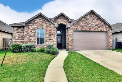 Single Family Home For Sale: 2109 Ibis St