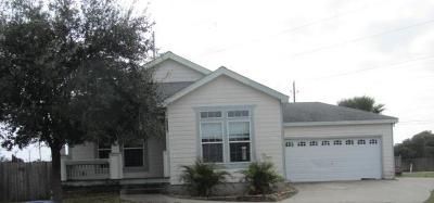Single Family Home For Sale: 2233 Oak Crest St