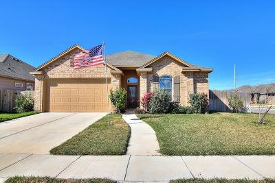 Corpus Christi TX Single Family Home For Sale: $219,900